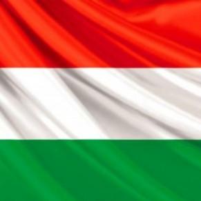 Un projet de loi prévoit de rendre le mariage gay anticonstitutionnel    - Hongrie