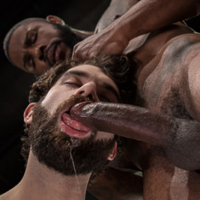 SHUT UP AND FUCK ME ! ; Tais-toi et baise moi ! - DVD / Raging Stallion