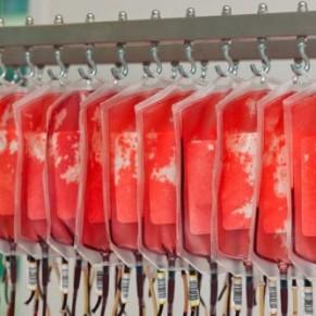 Le Danemark assouplit les conditions de don de sang des hommes gays  - VIH