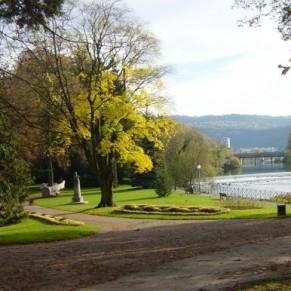 Une série d'agressions homophobes dans un parc public - Besançon