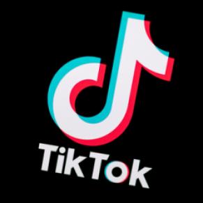 Le réseau social TikTok censure des hashtags LGBT - Internet