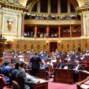 La PMA pour toutes de retour au Sénat  - Projet de loi