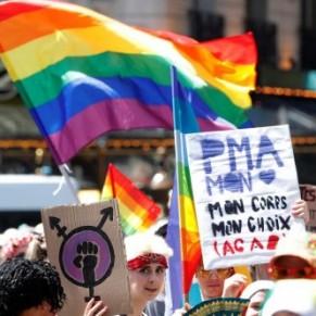 Les associations LGBT furieuses après le rejet au Sénat de la PMA pour toutes - Homoparentalité