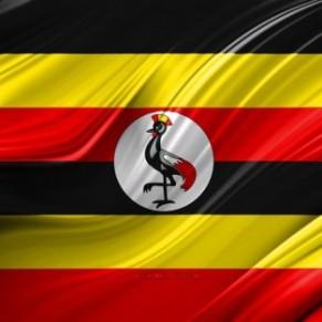 Le gouvernement suspend les activités de 54 ONG  - Ouganda